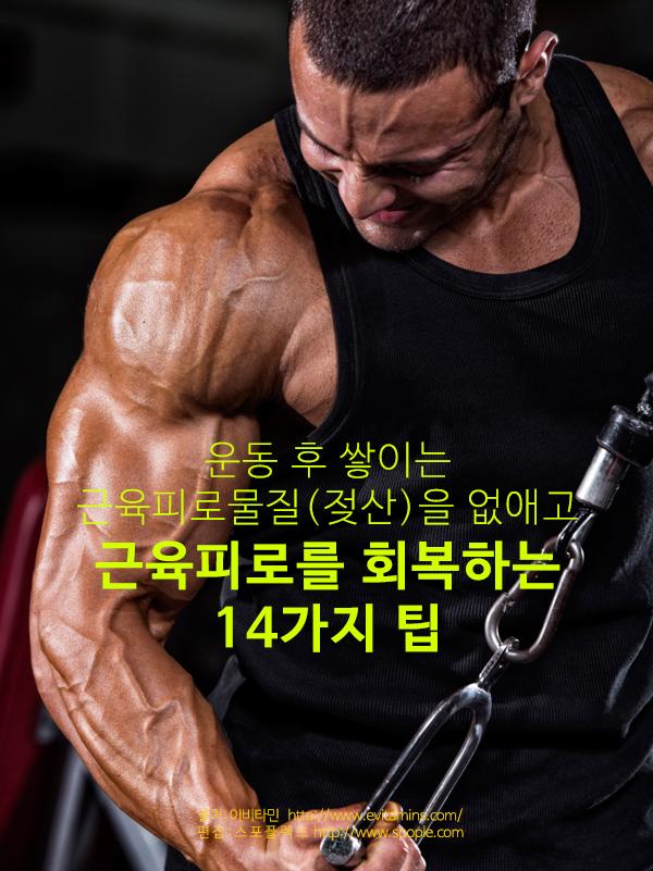 SPX_1604_tall_01